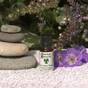 on angels wings aromatherapy oil blend