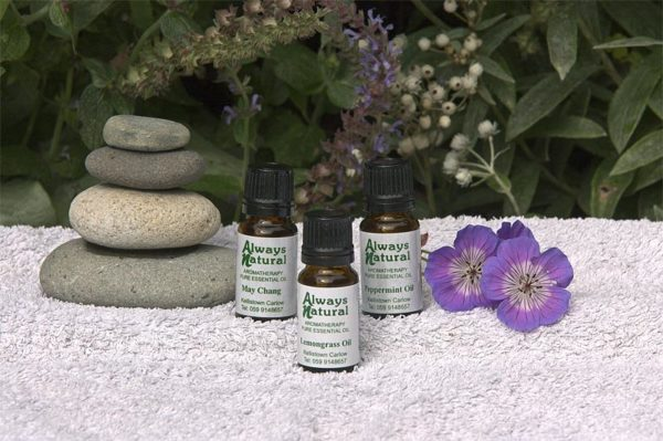 essential oils pest control collection