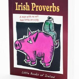 proverbs mini book
